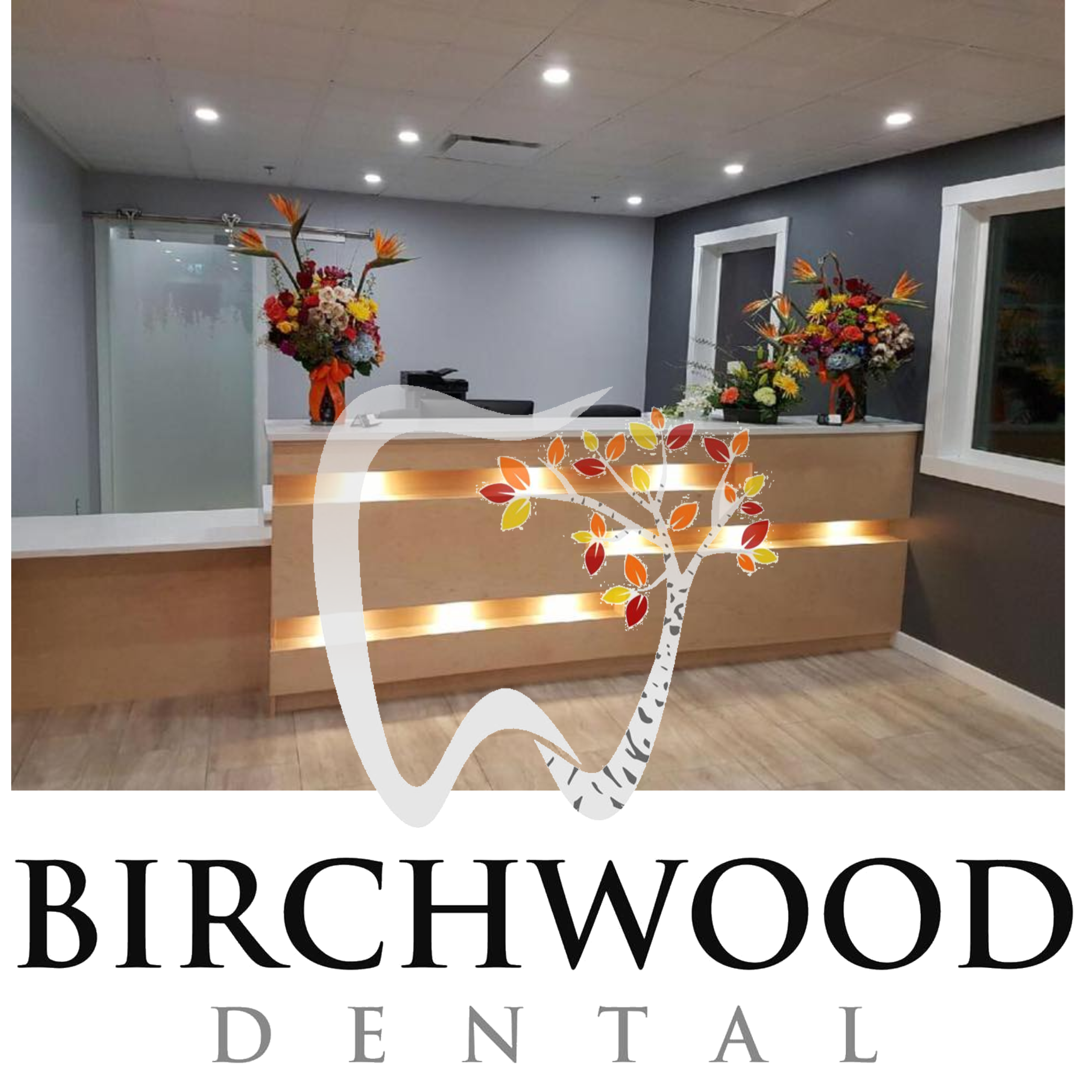 take the tour of Birchwood Dental, Yellowknife's newest dental clinic!